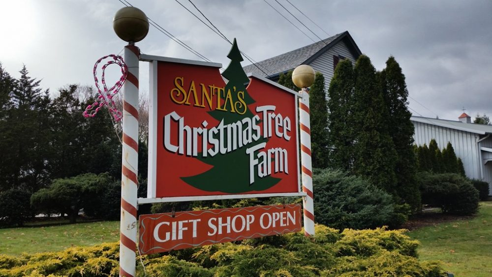 Santa's Christmas Tree Farm North Fork LI
